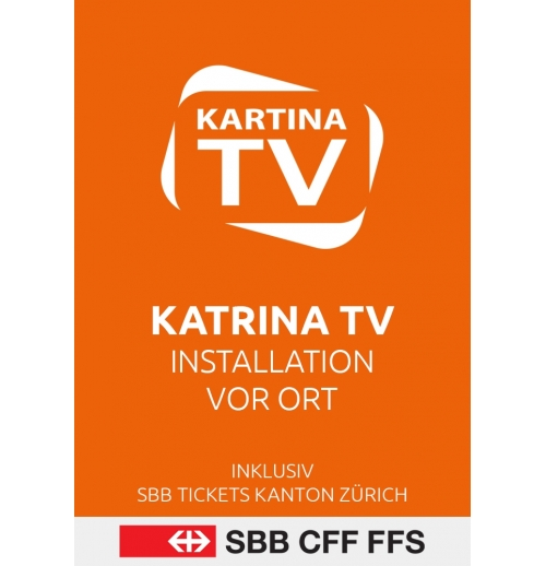 Kartina TV Installation vor Ort